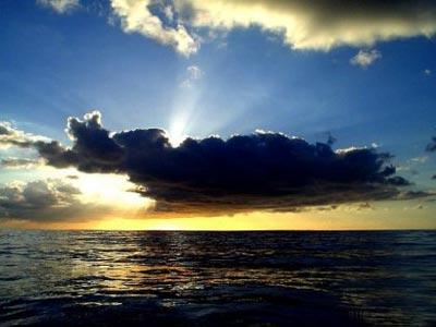 Бермуды (6 фото)